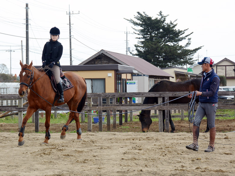 初めて馬に乗る方・初心者の方